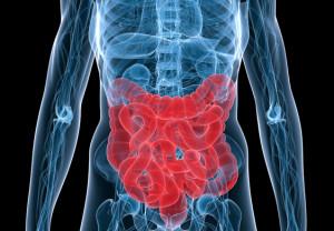 MBCT inflammatory bowel disease - Schoultz2
